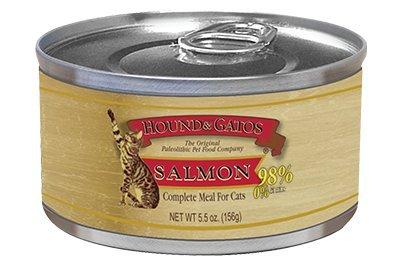 Amazon.com : HOUND & GATOS Grain-Free Salmon Recipe Canned ...