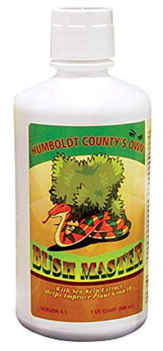 Humboldt County's Own Bush Master Bushmaster Quart ()