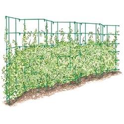 Gardener's Supply Company Expandable Pea Trellis