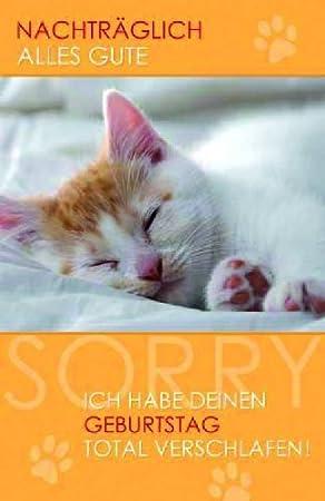 Karte Geburtstag Nachtraglich Katze Liefermenge 5 Amazon De