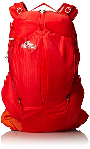Gregory Miwok Daypack - 5
