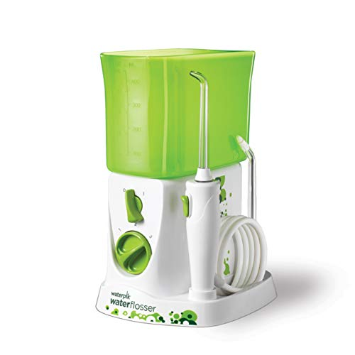 Waterpik Water Flosser for
