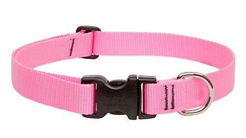 Pink Dog Collar - LupinePet Basics 1