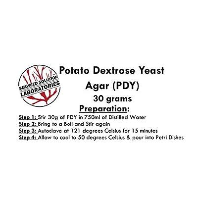 Potato Dextrose Yeast Agar (PDY) Dehydrated, 30 Grams: Toys & Games