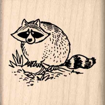 Raccoon Rubber Stamp - 1-1/2 inches x 1-1/2 inches