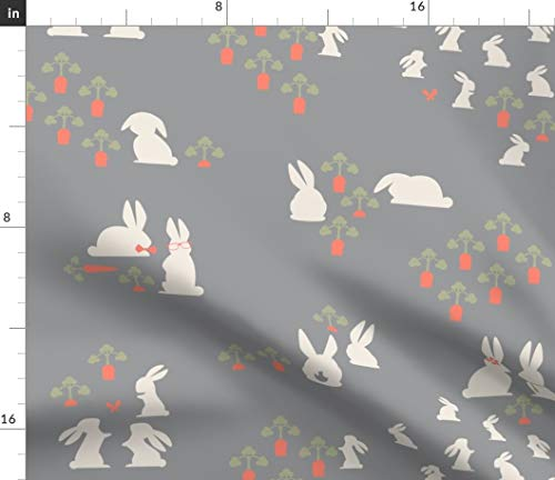 (Spoonflower Bunny Family Fabric - Rabbit Relatives Collection Gray Rabbits Carrots Garden Quilt Julies S Easter Print on Fabric by The Yard - Fleece for Sewing Blankets Loungewear and No-Sew Projects)
