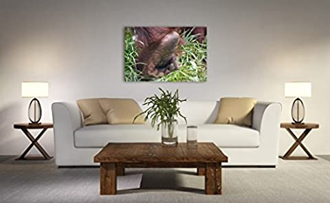 Wild Animal Photo Print on CANVAS Orangutan Foot Photography Gift for Animal Lover Wall Art Photographic Copper Brown Green Natural Home Decor Ready to Hang 8x10 8x12 11x14 12x18 16x20 16x24 (Return Labels For My Orders)