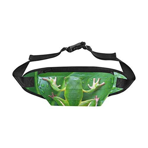 - InterestPrint Travel Fanny Bag, White Lipped Tree Frog on Green Leaves Tree Frog Fashion Belt Bag Crossbody Body Daypack