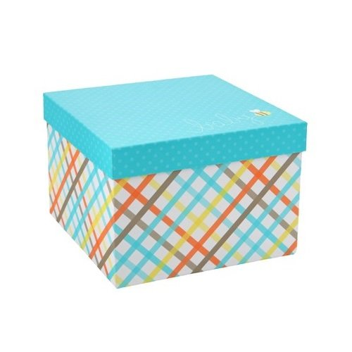 Spritz Set of 2 Patterned 10-Inch Baby Gift Boxes ()