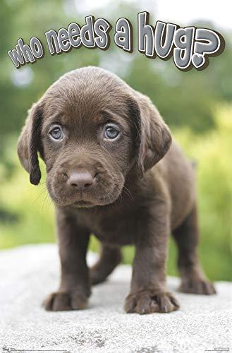 - Trends International Puppy-Hug Clip Bundle Wall Poster, 22.375