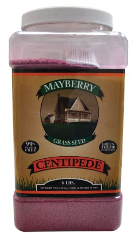 Mayberry Centipede Seed, 6-Pound by Mayberry