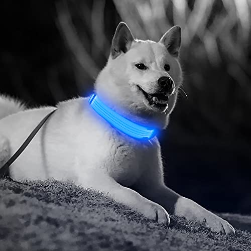 Candofly Rechargeable LED Dog Collars - Glow in The Dark Dog Lights Durable Nylon Lighted Collars for Small Medium Large Dogs Keep Your Pets Be Visible & Safe at Night (Blue, Medium)