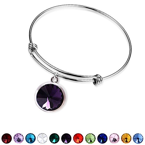 - June Birthstone Charm for women-Alexandrite Silver Alloy Crystal Adjustable Birthstone Jewelry Bangle Bracelet for Women
