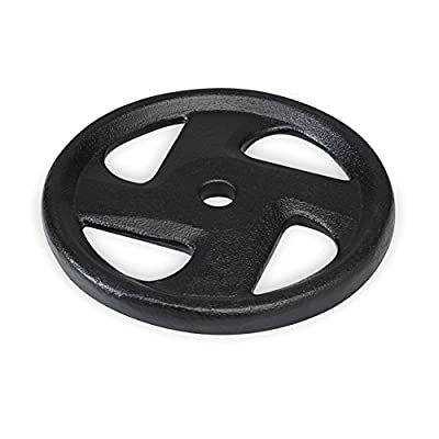SPRI Cast Iron Weight Plate