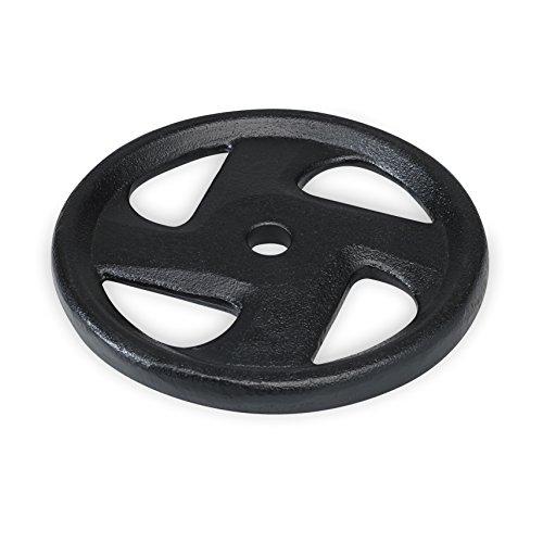 SPRI Cast Iron Weight Plate