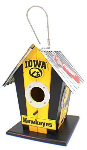 Bird House Dragonfly (University Of Iowa Bird House)