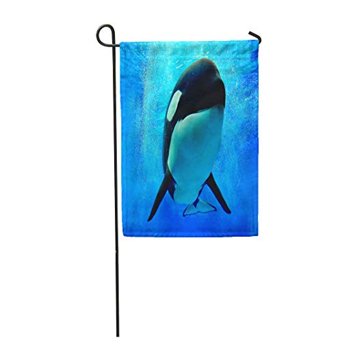 Semtomn Garden Flag 12x18 Inches Print On Two Side Polyester Blue Orca Killer Whale Swimming Underwater Bubbles World Home Yard Farm Fade Resistant Outdoor House Decor -