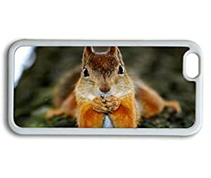 Adorable Squirrel Sakuraelieechyan iPhone 6 Plus (5.5 inch) White Sides Rubber Shell TPU Case