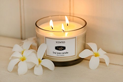 White Tea and Ginger Scented Candles 13oz Aromatherapy Large 3 wick Candle Natural Wax, Gift Candle for Mothers Day by Caitlins Home (Image #4)