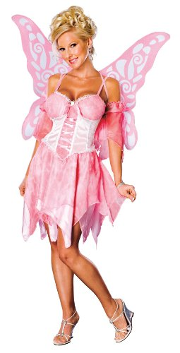 Secret Wishes Sugar Plum Fairy Costume With Wings, Pink, Medium (Sexy Fairy Costume)