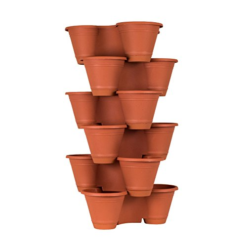 terra cotta strawberry pot - 6