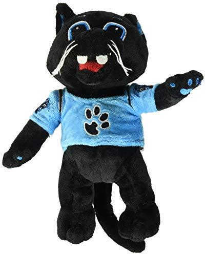 Carolina Panthers 8