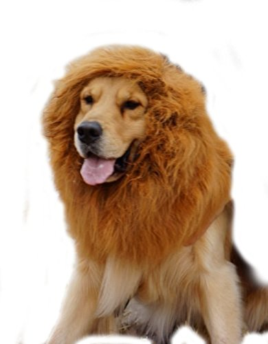 KLAREN Large Pet Dog Cat Lion Wigs Mane Hair Festival Party Fancy Dress Clothes Costume(Brown, L) (Orlando Costumes)