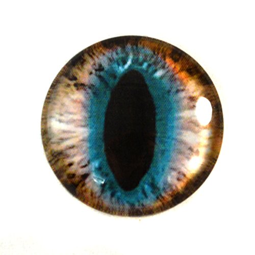 30mm Brown and Teal Cat or Dragon Fantasy Glass Eye Single Cabochon Taxidermy Pendant Doll Making Art Sculpture or Jewelry Crafting Supply