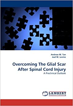 Overcoming The Glial Scar After Spinal Cord Injury: A Preclinical Outlook