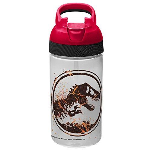 Zak Designs Jurassic World 2 19 oz. Plastic Water Bottle, Ju