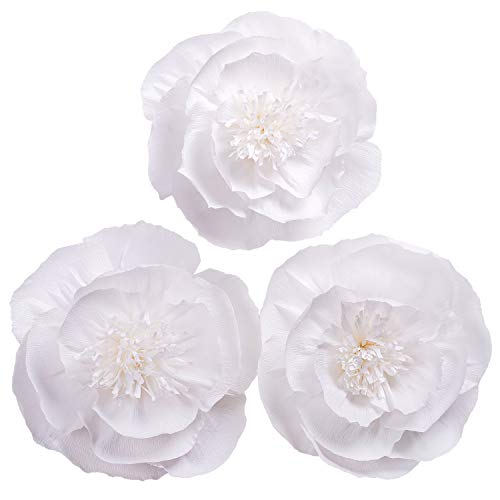 Letjolt Paper Flower Decorations White Crepe Paper Flower for Wedding Decorations Baby Shower Valentines Day Party Decorations Nursery Flower Home Wall Decor(Set 3)