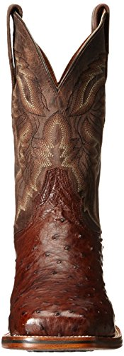 Dan Post Mens Alamosa Western Boot Chocolate PQCv0l