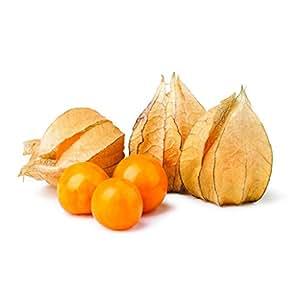 Physalis Peruviana Golden Berry Groundcherry Inca Berry Cape Gooseberry Seeds 50 PCS