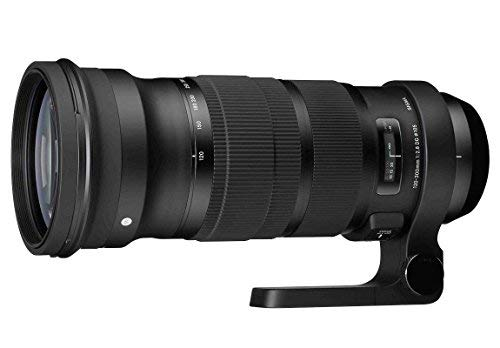 Sigma 137306 120-300mm F2.8 DG OS HSM Lens for Nikon (Black) - International Version (No Warranty)