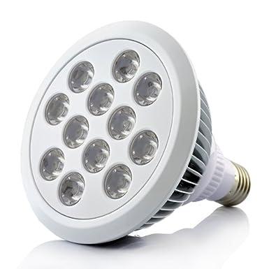 Grow Light - LED hydroponic growing l& - 12 Large LEDs - Red Blue  sc 1 st  Amazon UK & Grow Light - LED hydroponic growing lamp - 12 Large LEDs - Red ... azcodes.com