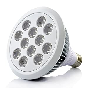 Grow Light - LED hydroponic growing l& - 12 Large LEDs - Red Blue Orange - Screw fitting bulb - Ideal for indoor plants - High Light output but Low ...  sc 1 st  Amazon UK & Grow Light - LED hydroponic growing lamp - 12 Large LEDs - Red ... azcodes.com