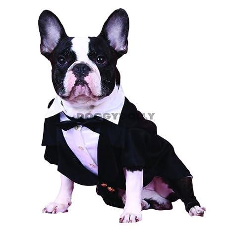 Bully frac con pajarita y corbata Negro Carlino & Bulldog de Doggy ...