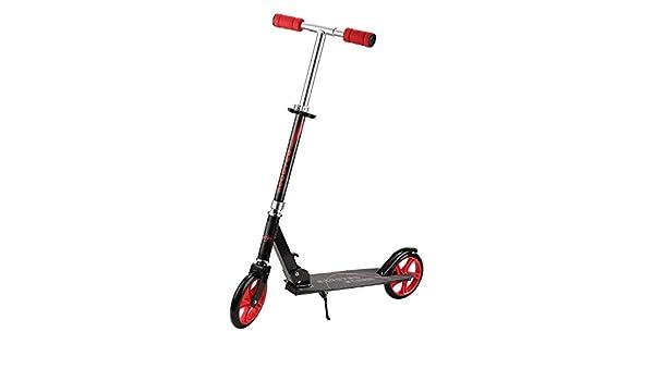 Windgoo Scooter eléctrico para Adultos Plegable - 8.5
