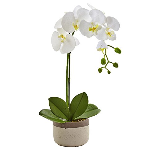 Nearly Natural 4569 Phalaenopsis Orchid in Ceramic Pot (Artificial Orchids In Pots)