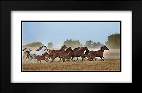 Freedom 40x22 Black Modern Frame and Double Matted Art Print by Ortega, Xavier