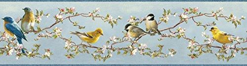 Bird Border (Chesapeake HTM48511B Louise Blue Songbird Portrait Wallpaper Border)