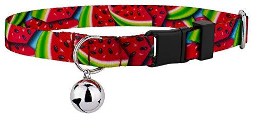 (Country Brook Petz - Summer Melon Cat Collar)
