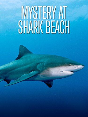 shark attack movies - 6