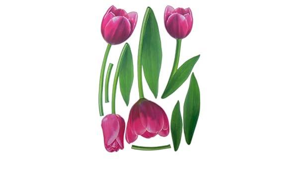2 XXL hojas tulipanes para pared tatuaje tatuajes de pared ...