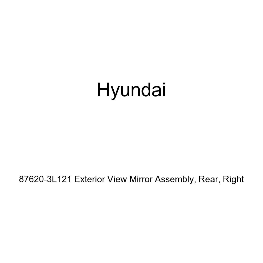 Right Rear Genuine Hyundai 87620-3L121 Exterior View Mirror Assembly