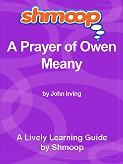 Novels to compare to A Prayer for Owen Meany?