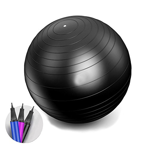 IEase Exercise/Yoga Ball with Pump Strength Stability Balance Therapy Gym Fitness Pregnancy office Birthing Ball 2000lbs Anti-Burst 65cm/75cm Balls