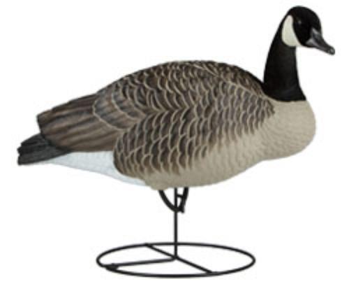 Dakota Decoy 19400 Waterfowl Hunting Signature Series Upright Geese (6 Pack)