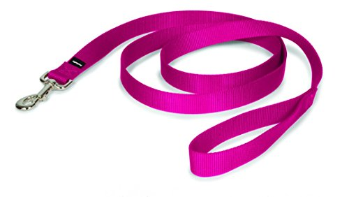 x 6', Medium, Raspberry Pink (Nylon Dog Collar Raspberry)
