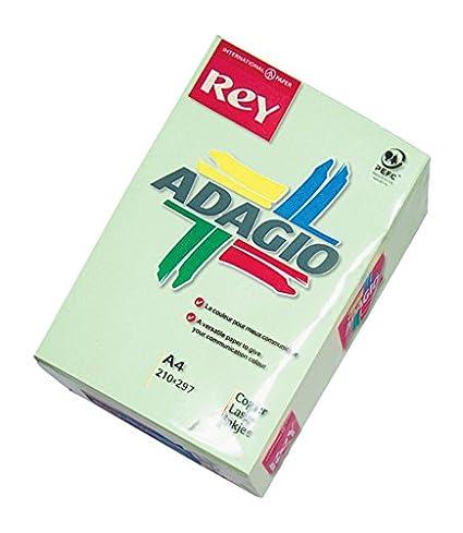 Rey Adagio 336053 Papel A4 500 hojas para impresoras y ...